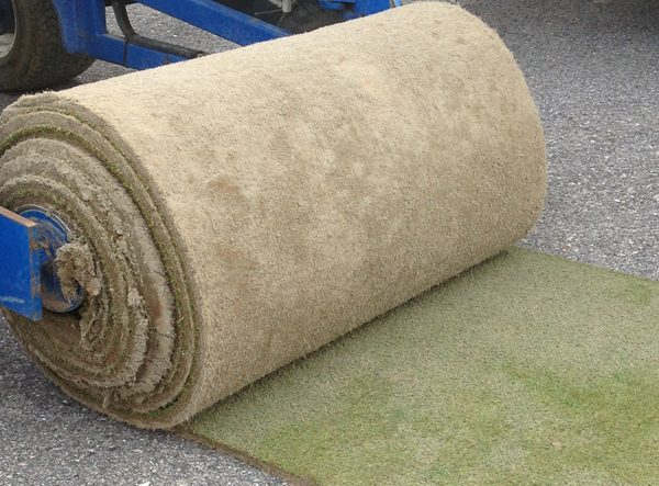 Turfgrass Big Roll